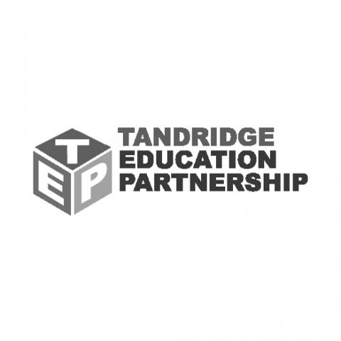 Tandridge Education Partnership