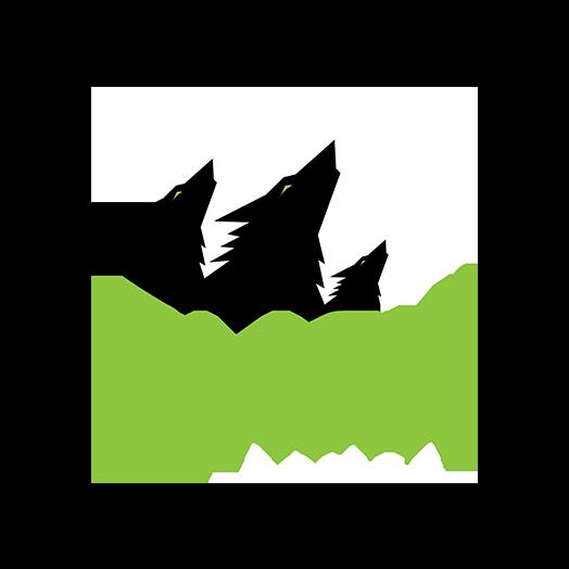 Black Forest Games